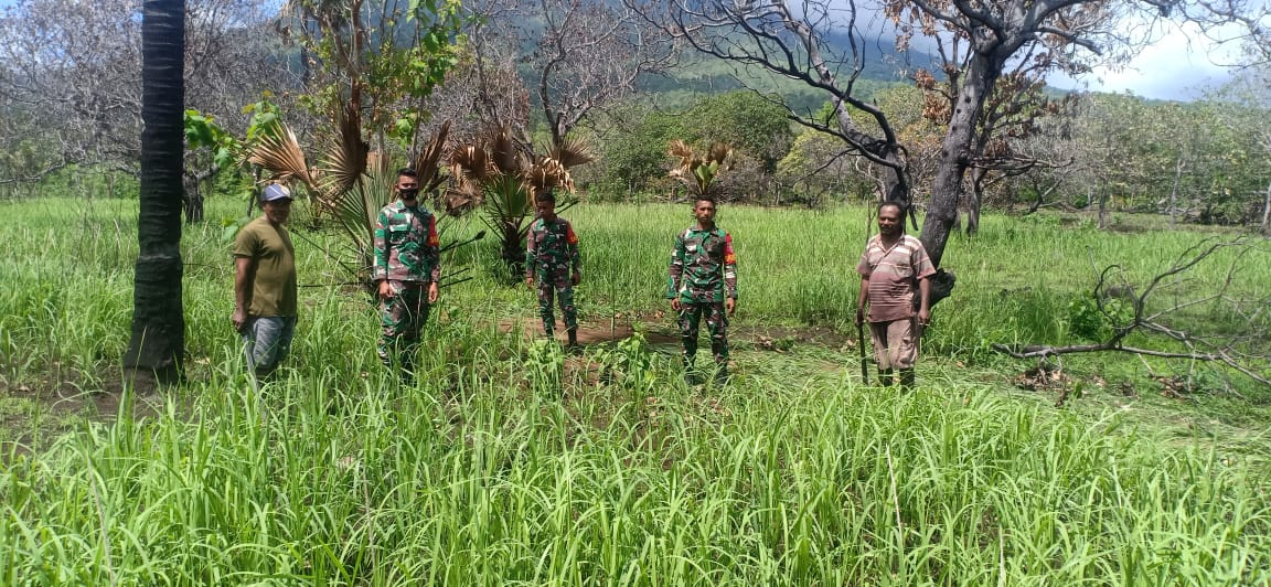 Petani Ile Boleng, Adonara Apresiasi Program Ketahanan Pangan TNI
