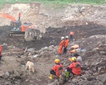 Anjing Pelacak Basarnas Bantu Endus Jasad Korban Banjir Bandang, Yang Tertimbun Material